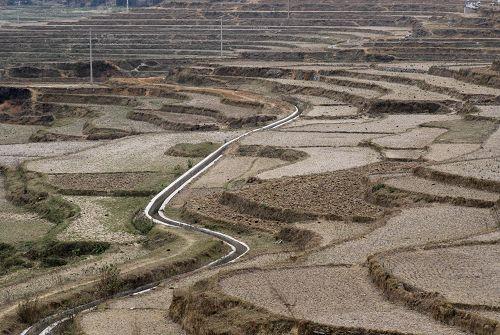 今年的干旱促使更多的人出门打工。田地更加荒芜。