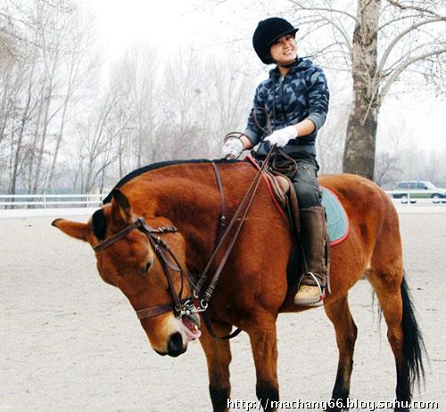 美女:马畅a美女美女行太极马场与小马开心合影光跳舞脚组图图片图片