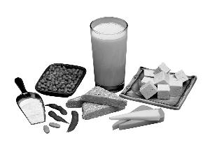 黄豆 豆浆 发芽 补钙/发芽黄豆做豆浆更补钙吗