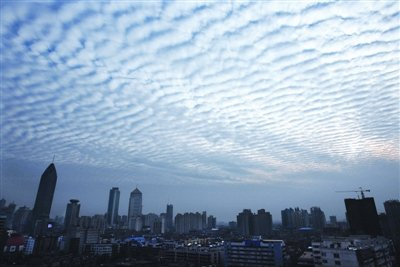 武汉近日出现鱼鳞云 专家称非地震前兆(图)
