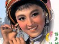 杨丽坤专辑:小九儿