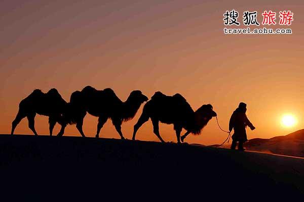 沙漠里寻找绿洲与神光
