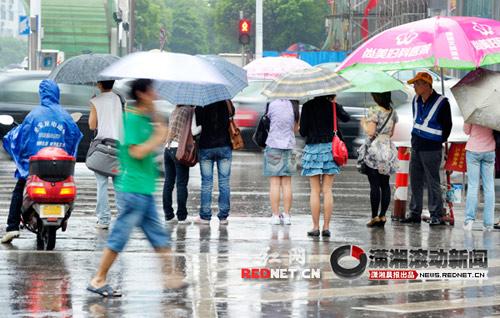 长沙市芙蓉中路松桂园路口,许多市民打着雨伞在等候红绿灯。潇湘晨报滚动摄友团 郭立亮