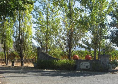嘉莫斯-嘉本纳沙威浓 CAYMUS CABERNET SAUVIGNON 美国加利福尼亚州纳帕谷