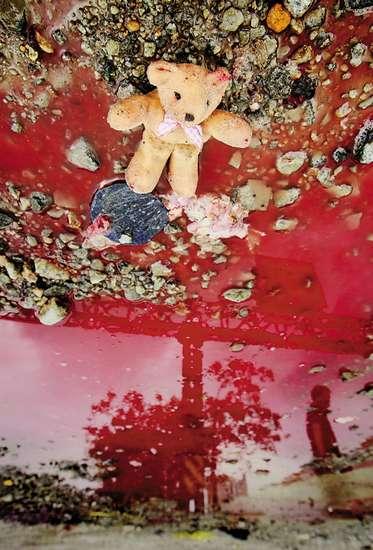 万象/熊娃娃孤独地躺在主人的血泊中羊城晚报记者陈文笔摄