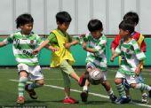 """幻灯:世界杯将打响 韩国""""小世界杯""""如火如荼"""