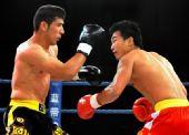 图文:姜春鹏KO伊朗选手 姜春鹏准备出拳