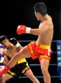 图文:姜春鹏KO伊朗选手 摩加塔巴防守