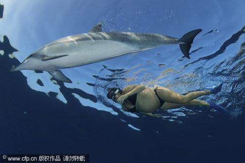 组图:夏威夷两孕妇下海游泳 引来海豚同游