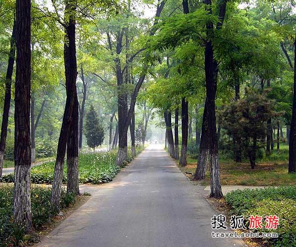 娜尔思2016款顺鑫绿色度假村漫享26℃绿色假日-搜狐旅游2016有哪些好看的美剧