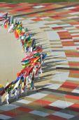 图文:2010南非世界杯开幕式举行 国旗依次入场