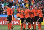 图文:荷兰队战胜丹麦队 荷兰队庆祝第二粒进球