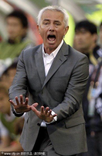 图文:世界杯教练众生相 伯特-范马尔维克