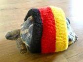 高清图:疯狂的德国球迷 美女秀文身乌龟也疯狂