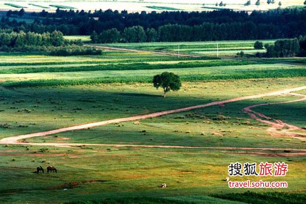 丰宁坝上  离北京最近的坝上草原