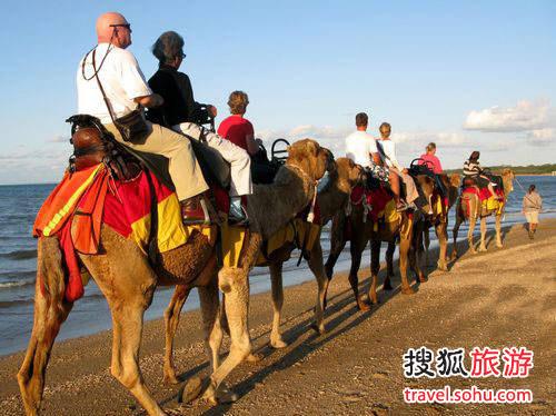 女性 大洋洲/骑骆驼游猎之乐