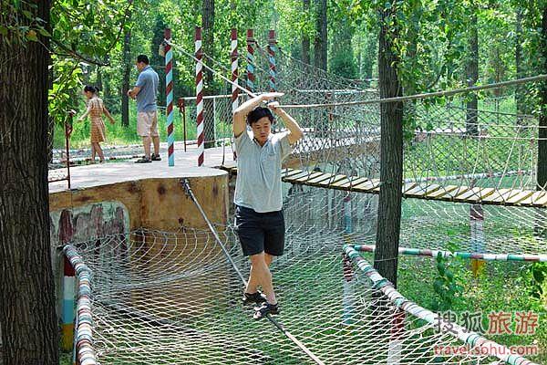 顺鑫绿色度假村有国内最早的树上穿越场地