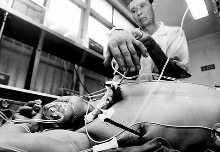 据了解,受伤民工来自四川,名叫何才章,今年39岁,在南二环东段刘家庄图片