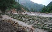 暴雨已造成甘肃陇南市26人遇难75人失踪