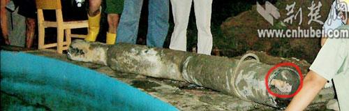 湖北12岁男孩泳池学游泳 被吸入抽水管身亡(图)