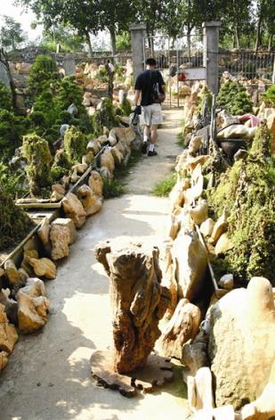 淮南惠州村民盗采紫金石称一块抵一套别墅别墅v村民安徽图片