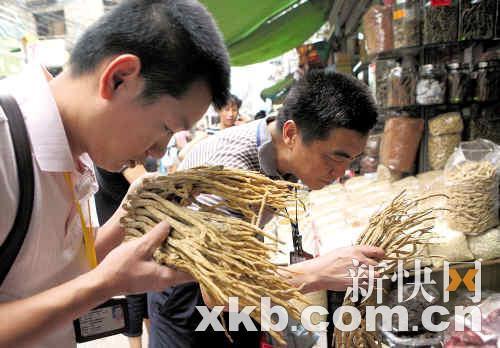 昨日上午,执法人员在广州清平中药材市场抽查药材含二氧化硫情况。新快报记者孟祝斌/摄