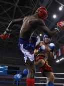图文:俄选手搏击低踢81公斤级夺冠 低鞭腿瞬间