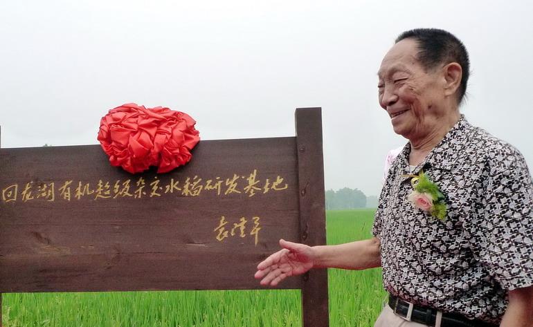 袁隆平:90岁时我还要向亩产一千公斤攻关(图)