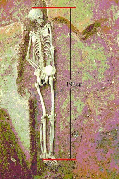 """""""小巨人""""被发现时的场景,测量后确认为193厘米高 陕西考古研究院供图"""