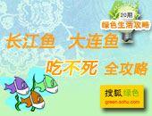 21期:长江鱼大连鱼吃不死全攻略