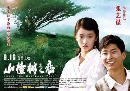 《山楂树之恋》海报