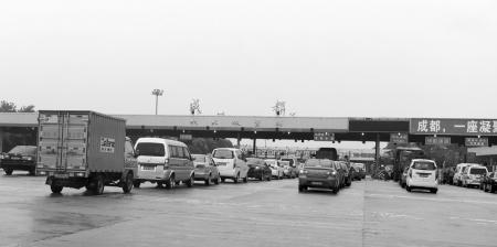昨日,成绵高速成都收费站,众多车辆排成长队等待进城杨涛摄