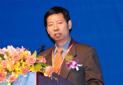 张文魁 国务院发展研究中心企业研究所副所长