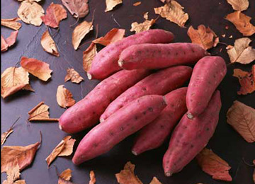 健康秘诀 红薯是世界上最好的食品