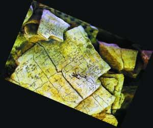 土的刻有文字的龟甲.  新华社/发-安阳殷墟遗址被列入首批国家考古