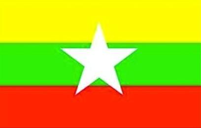 缅甸新国旗