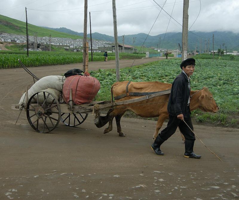 旅游时偷拍到的朝鲜老百姓真实的生活场景,特别是出售手机的这张照片