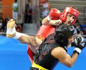 图文:男子散手75KG伊朗选手折桂 飞腿威力巨大
