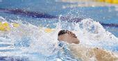 图文:男子4X100米混合泳 孙晓磊在比赛中