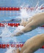 图文:男子4X100米混合泳 孙晓磊在比赛中入水