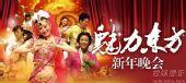 纪念毛泽东和魅力东方晚会 魅力东方 海报