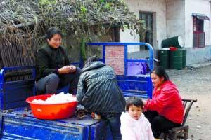 11月12日。上岸后的监利先锋渔场的渔民,男人从事养殖业,女人们给周边农民剥棉花,贴补家用。