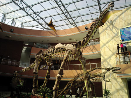 恐龙之乡河源终圆龙梦 恐龙灭绝疑因性障碍