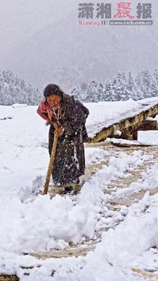 11月6日,青海玉树,屋顶的积雪已达10多厘米厚。图/IC