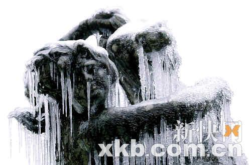 罗马许愿池被冻结。