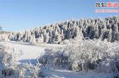 林海雪原仙女山 南国也能体验冰雪童话
