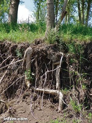 黑龙江省平均每年流失黑土大约2-3亿立方米,每年因水土流失减产粮食20亿-40亿公斤。