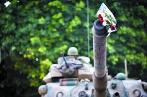 20日,突尼斯街头,一束鲜花放在坦克的炮筒上。当天,突尼斯内阁会议宣布将实行全国大赦。