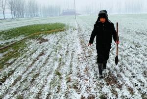 雪花飞舞-久旱的北方终于下雪了