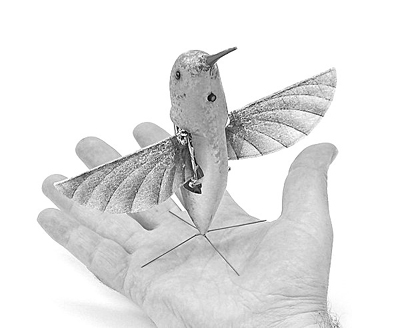 美军巨资打造蜂鸟侦察机